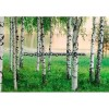 _Mural Murales Wizard+Genios AG Ref. M-290_Nordic_Forest