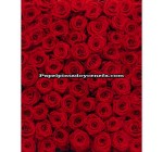 _Mural Imagine Edition 1 Ref. M-4-077_ROSES