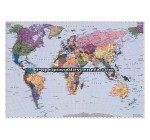 Mural Scenics Edition 1 Ref. M-4-050_WORLD_MAP