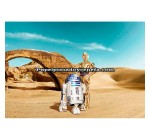 Mural Star Wars Marvel Pixar Disney Ref. M-8-484-STAR-WARS-LOST-DROIDS